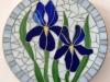 iris-stepping-stone